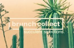 artwork for Bruch collect's compilation