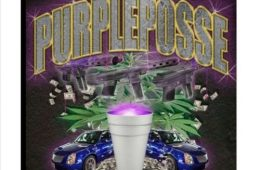artwork for PURPLE POSSE's playlist POSSE CLASSICS