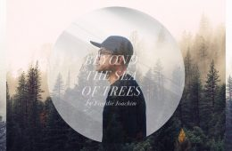 Freddie Joachim - Beyond The Sea of Trees Album Stream