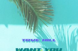 trve hill - want you artwork