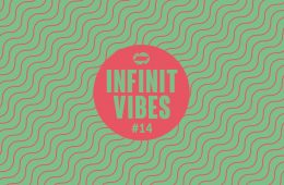 infinit vibes 14 a guest-mix by melle