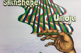 "Skinshape's new album ""Umoja"" is pure vacation for mind and soul"