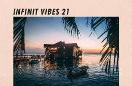 INFINIT VIBES 21 - A guest-mix by BORAE